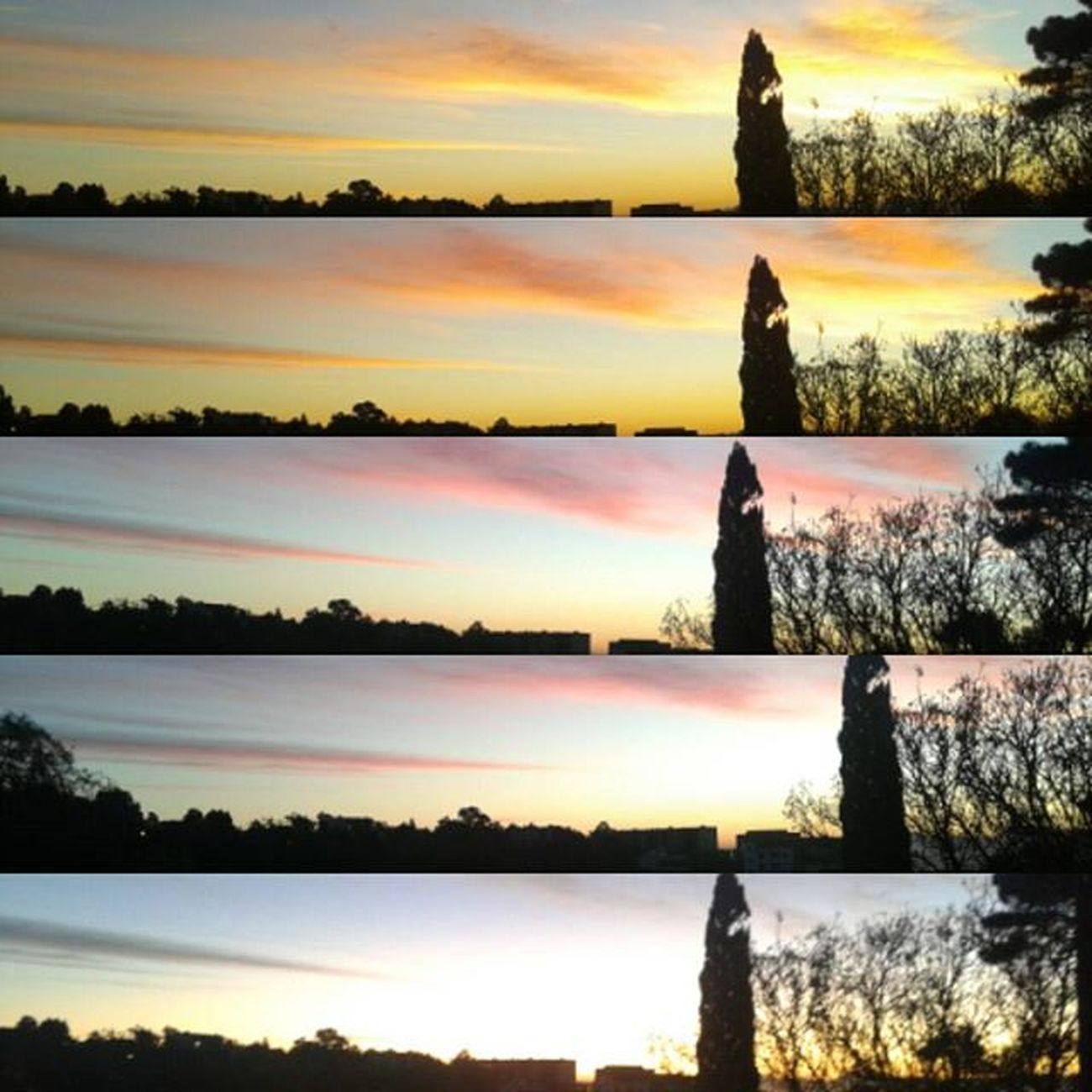 Phone_camera from window of my class n°12 7:00 Am to 7:30 Am ENSB There is a kind of Beauty in everything it is just right in front of our eyes, but we don't want to see it. We're always Pessimist why don't we try to be Optimist , and try to look to things, problems or anything in our life from different sides that would be better believe me ♥♥♥♥♥