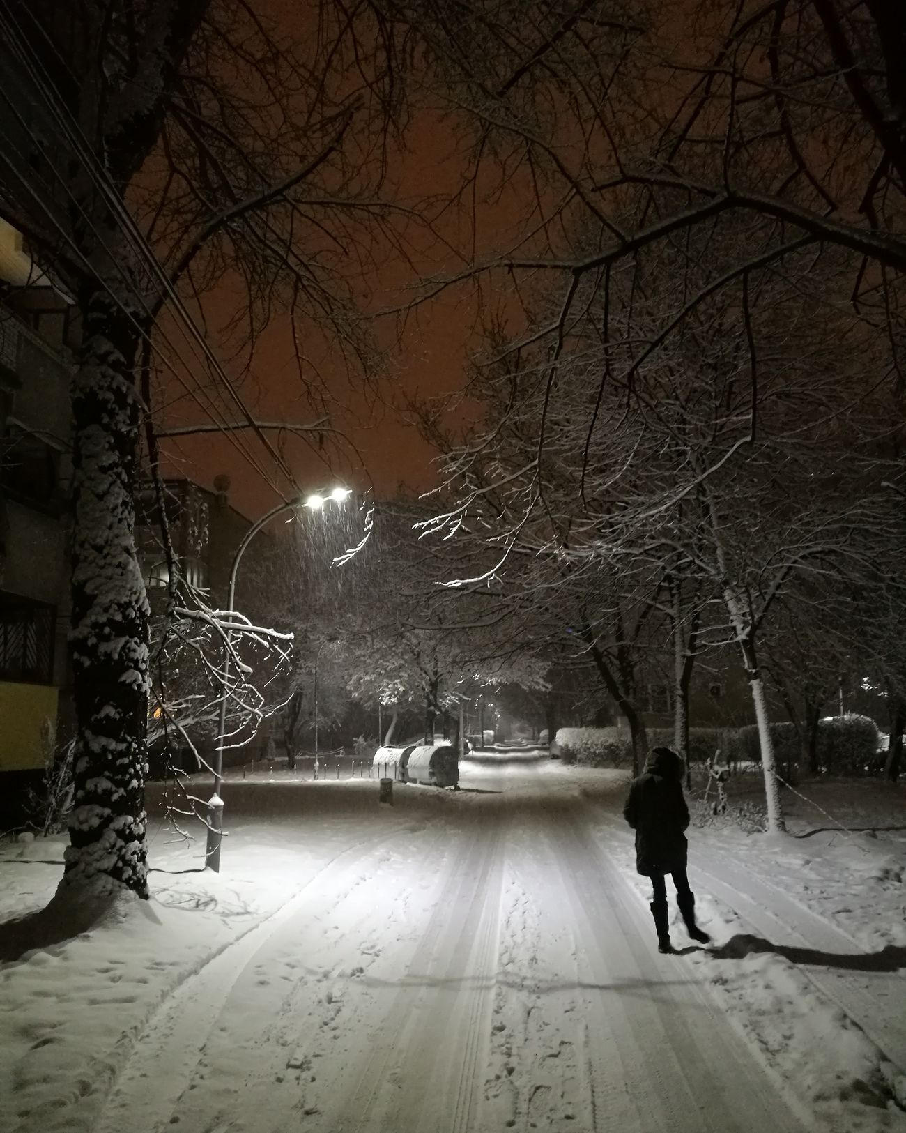 The magic of Snow at Night in Skopje