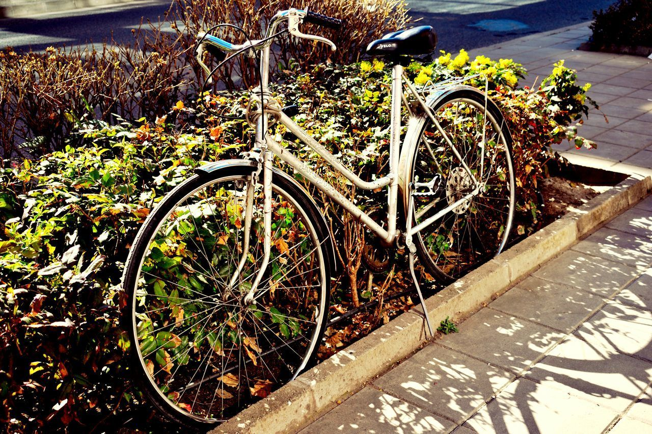 bicycle, transportation, day, wheel, abandoned, outdoors, no people, sunlight, mode of transport, stationary, rusty, spoke, bicycle rack, nature