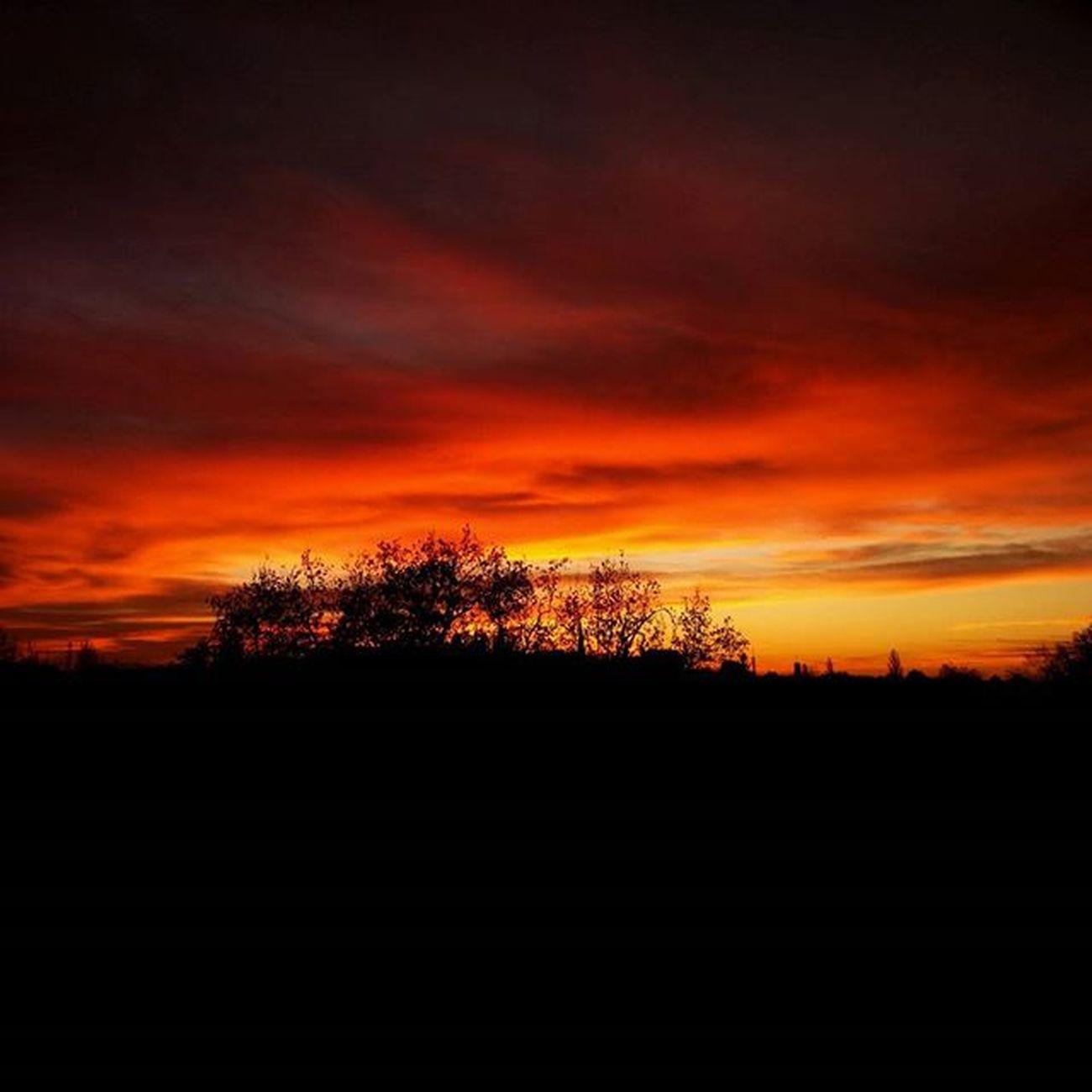 Rises above all Skyisonfire Morning Sunrise Sun Vscocam