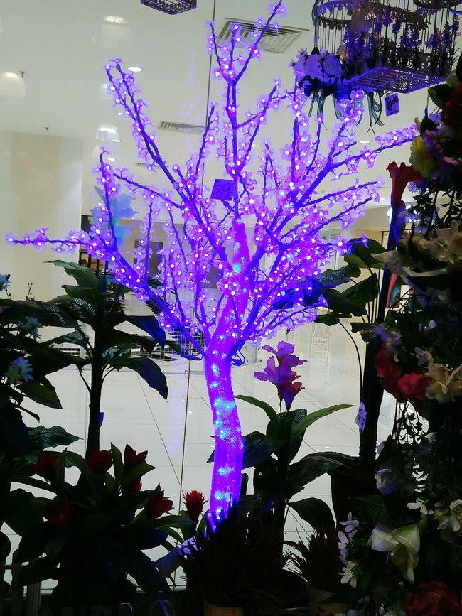 Tree Outdoors Tree Lamp Lamps Lampshades Home Decor Blue Lamp Posts Takenbyme Light Effect