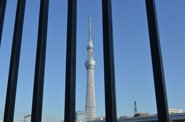 Spiritual Place Cityscapes Tower Caged Freedom Freedom Tokyo Sky Tree Alignment Peeking Skyscraper Pattern Pieces