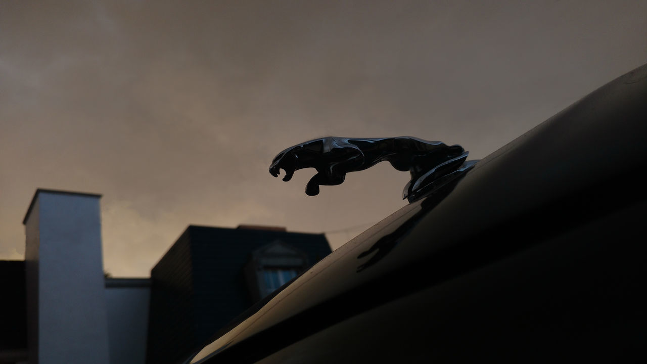 Mid-air JAGUAR Cars Luxury British Flying No People Building Exterior No Efects No Filter