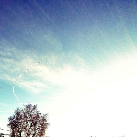Niceday Skydream Sky Collection Sky Marcandoladiferencia