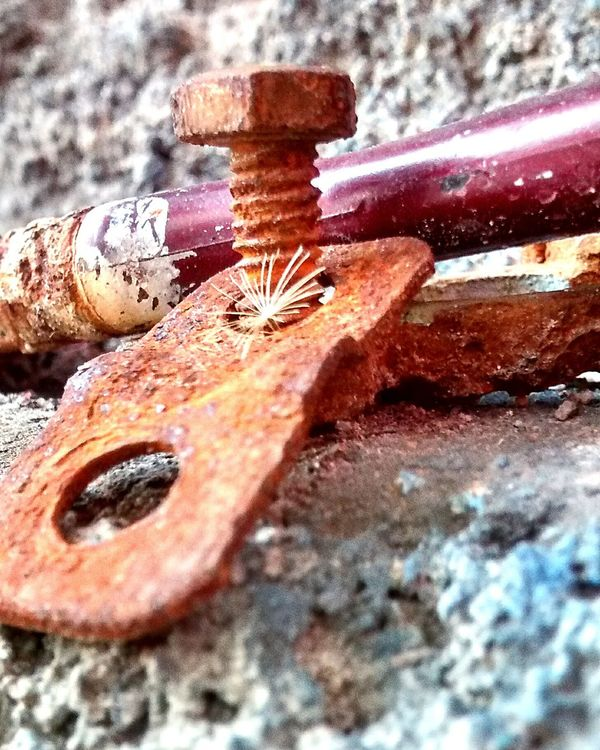 Old Tools Moto G Shot Open Edit FreeTime