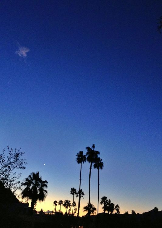 sunrise at City of Palm Springs by Jen Pollack Bianco