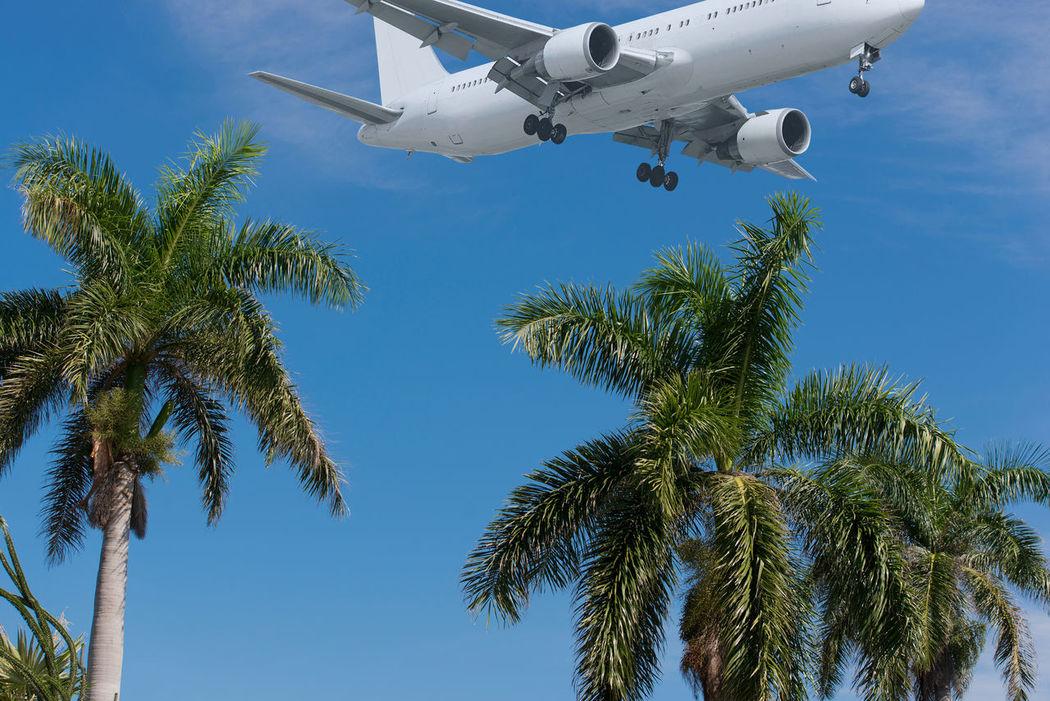 Landeanflug eines Flugzeuges über den Strand auf Kuba Varadero Atlantikküste Badeurlaub Concept Day Erholung Flugzeug Karibik KuBa Landeanflug No People Outdoors Reisen Sky Strand Tropisch Urlaub Varadero