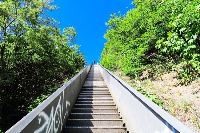 Up and into the Blue / with my Canon The Great Outdoors With Adobe The Great Outdoors - 2016 EyeEm Awards Streetphotography The Street Photographer - 2016 EyeEm Awards Envision The Future Ruhrgebiet Canon Canon 1Dx Scenics Landscape Staircase Stairs Remote Outdoors Leisure Activity Growth My Favorite Photo Clear Sky Taking Photos Field Non-urban Scene Rural Scene Architecture The Architect - 2016 EyeEm Awards Horizon Over Land