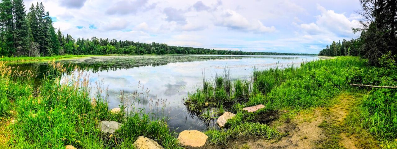 Mississippi headwaters, lake Itasca Beauty In Nature Outdoors Landscape Nature Tranquility Lake