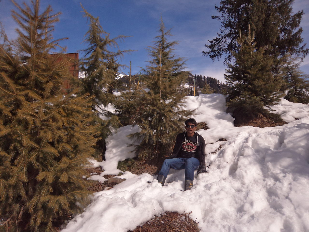 sitting, one person, tree, snow, winter, full length, outdoors, cold temperature, one woman only, nature, only women, day, adults only, people, warm clothing, adult, one young woman only, young adult, beauty in nature, sky