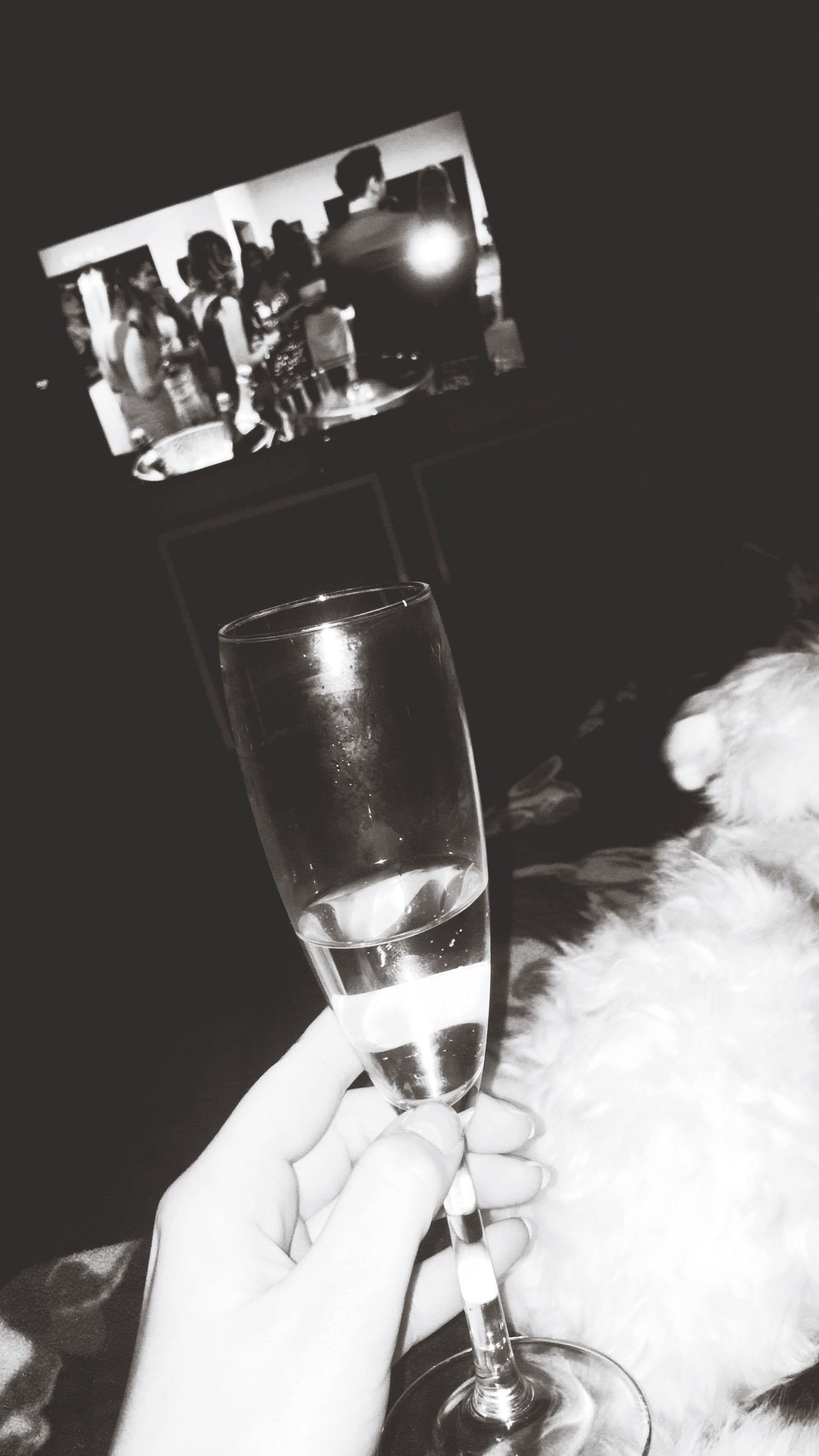 Today :) Drink Sekt Alcohol Drinking Glass Dog Girl Time For Myself Relaxing Netflix 💗