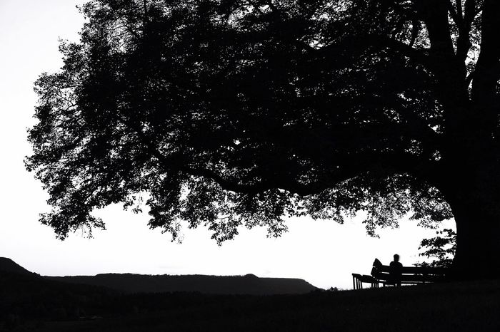 Relaxing Hi! Hanging Out Check This Out Enjoying Life Check This Out Blackandwhite Shadow Best Picture Ever. Germany Trees