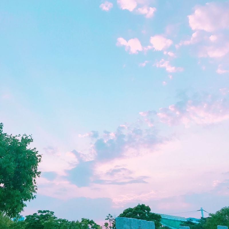 Sky Pink Blue Cloud 구름 날씨 맑음 분홍 Purple 하늘 전경 야경 노을 대구 사진 Photo First Eyeem Photo