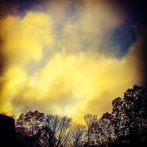 Golden December Clouds 2014 Clouds Trees Sky Collection IPSSkies