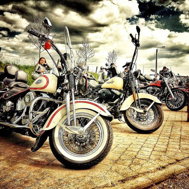 Motorcycle Twinbikers08