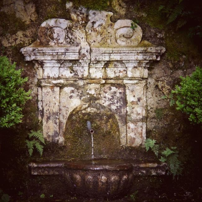 Wishing Well Holy Place Holy Spring in Aschau Bavaria Bayern Germany In The Forrest Forrest Wood Water Spring Holy Water White Magic Magic Pagan Flowing Water Flowing The Magic Mission Ancient Architectural Detail Well  Source