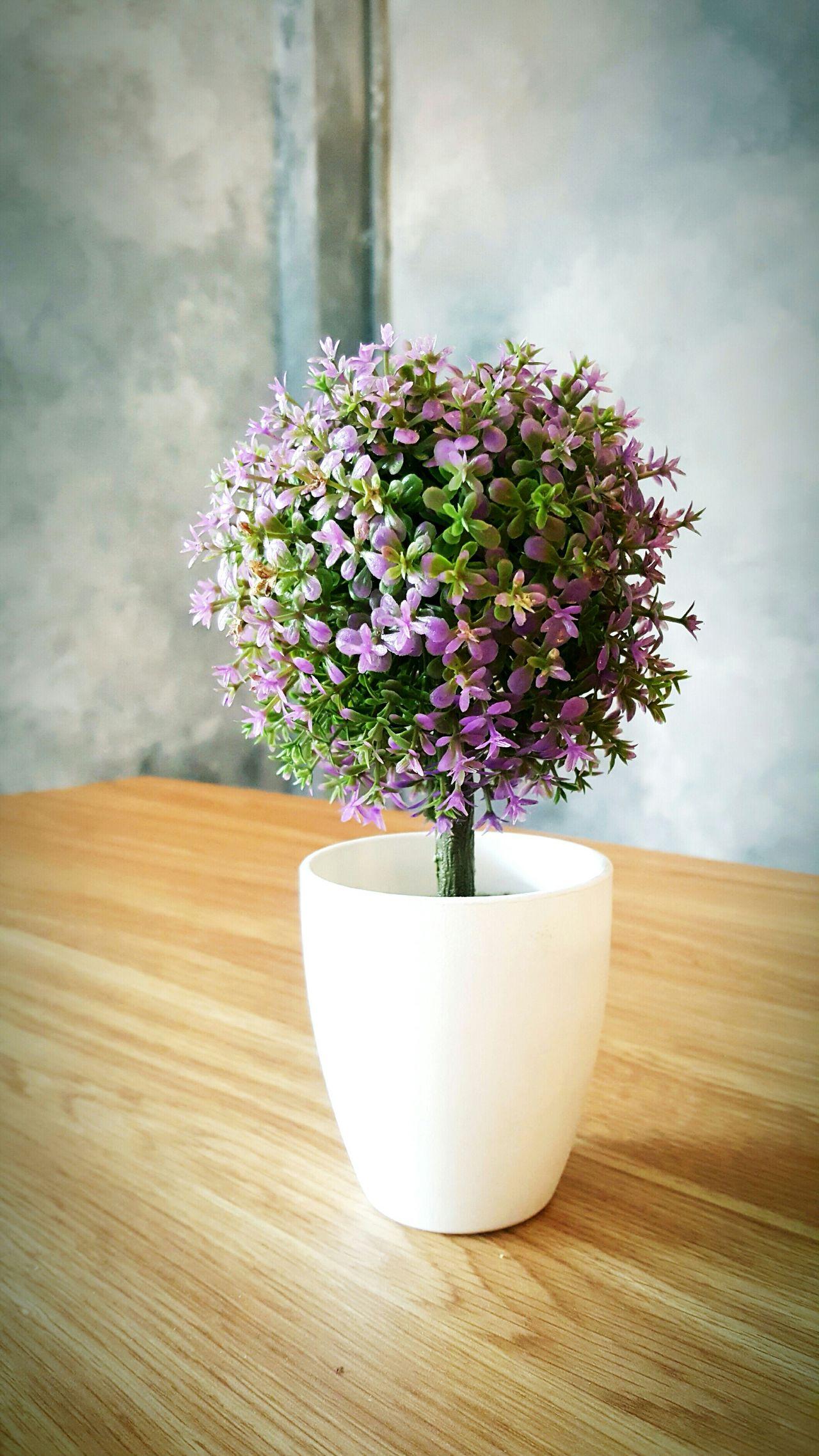 Flower Decoration Gelato Ice Cream Miss Rose