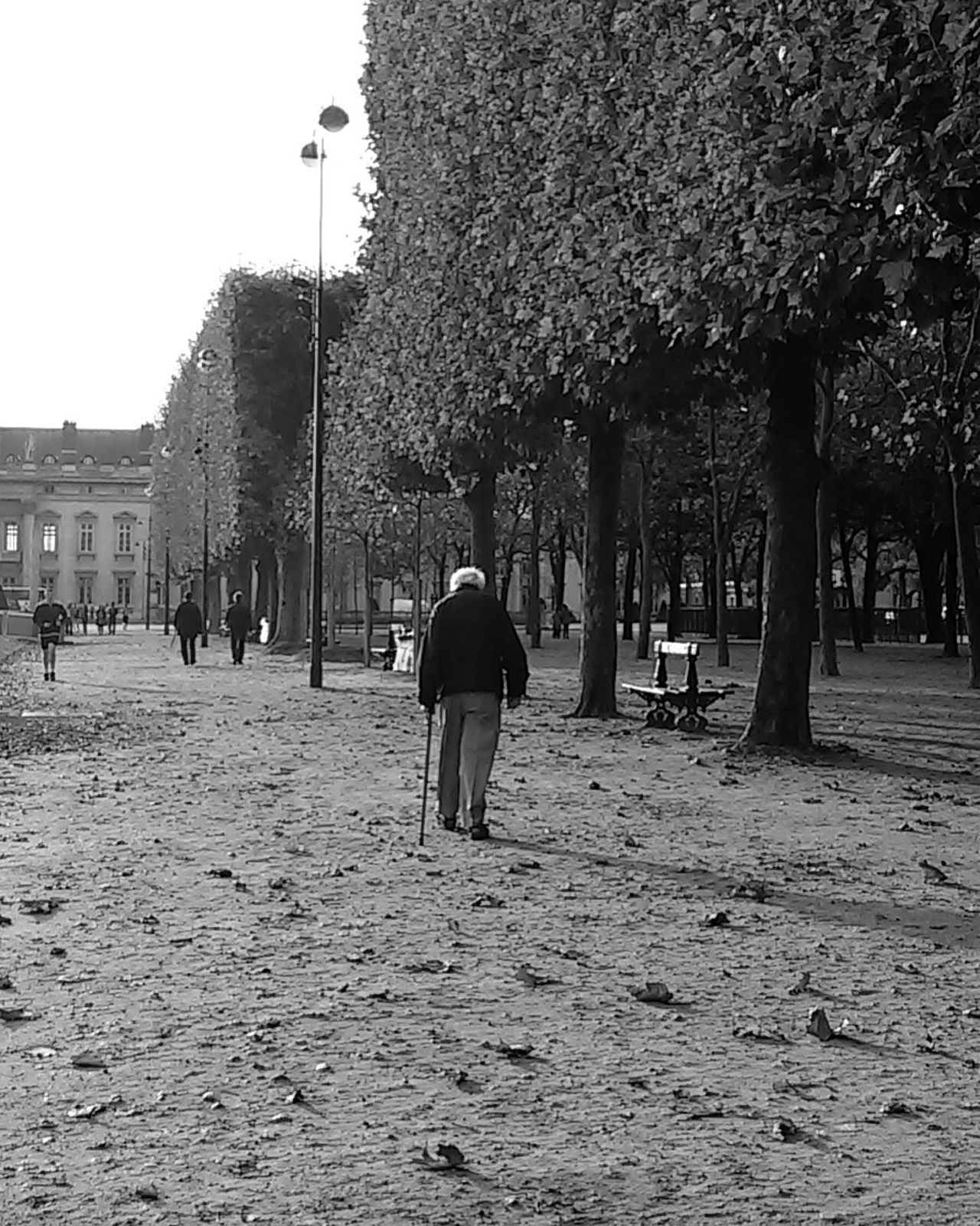 Alone I walk this earth... Photowalking Paris Streetphoto_bw Eyeem Philippines Street Photography Blackandwhite Bw_ Collection Authentic Moments RePicture Ageing The Human Condition RePicture Travel Feel The Journey