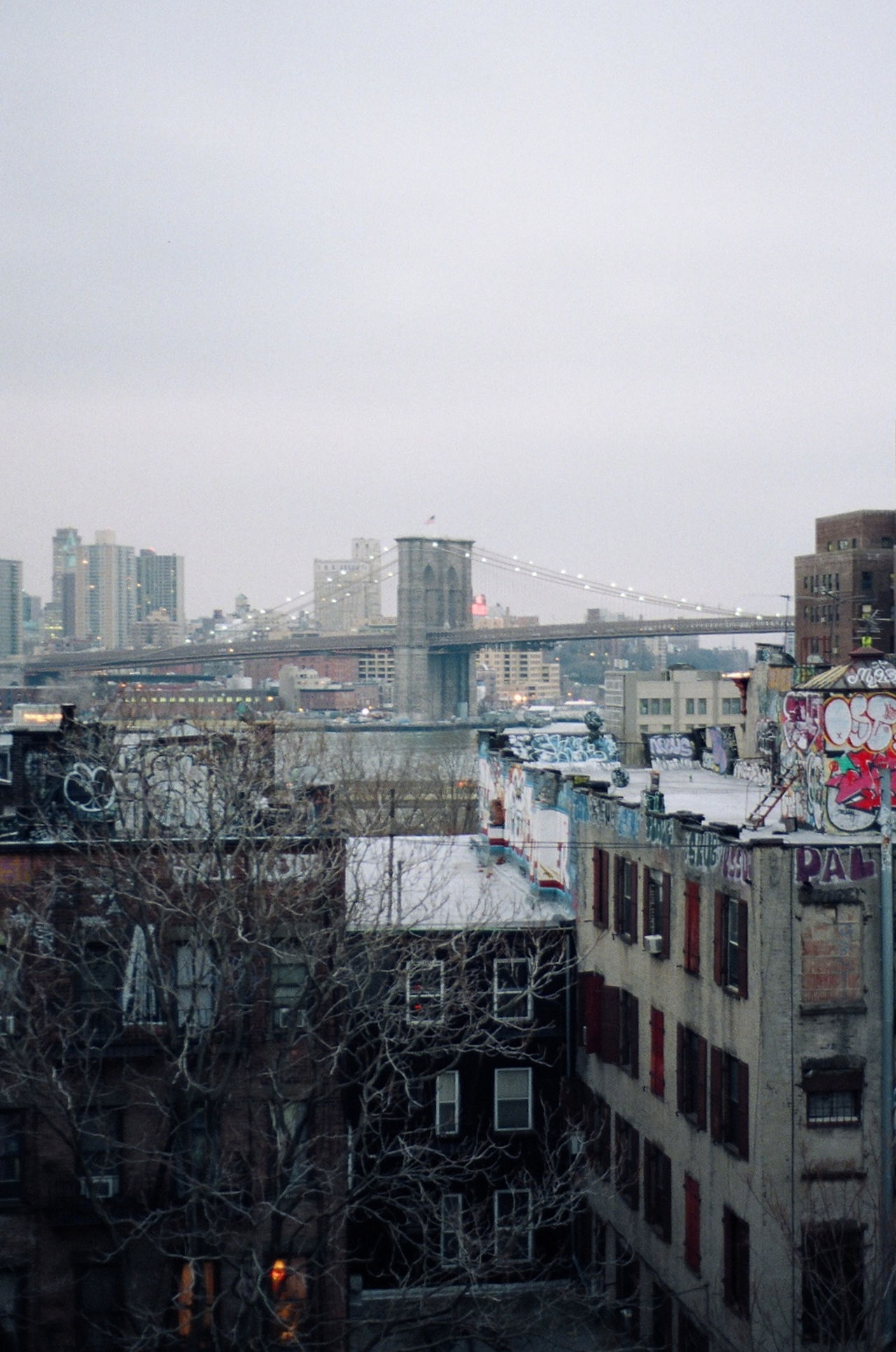 Architecture Brooklyn Brooklyn Bridge / New York Building Building Exterior Built Structure City City Life Cityscape Film Photography From Above  Graffitti Lower East Side Manhattan Modern Overcast Perspective Residential District Special_shots Streetart View Weather