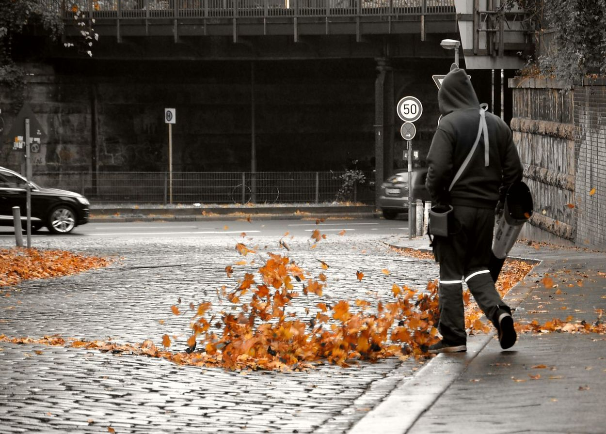 One Man Only Outdoors Berlin Photography EyeEm Best Shots Autumn Colors Golden October Colour Of Life Art Is Everywhere Autumn Streetcleaner Cleaner Autumn Leaves Autumn2017 Streetphotography Man@work Leaves Windmachine EyeEm Nature Lover Laubbläser Leaf Blower Machine Leaf Blower