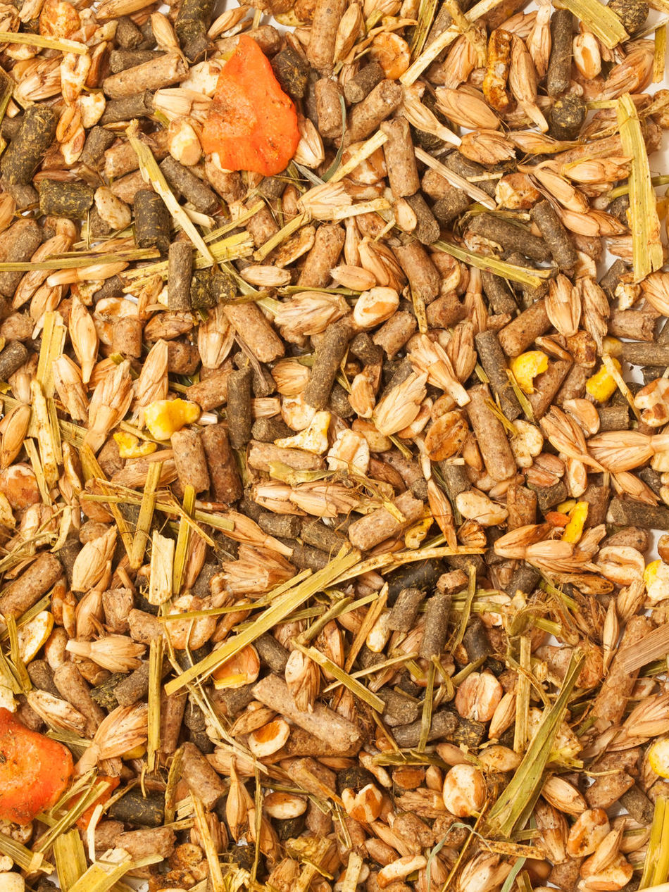 Backgrounds Cereal Plant Close-up Day Food Food And Drink Freshness Full Frame Healthy Eating Muslie Nature No People Outdoors Wheat