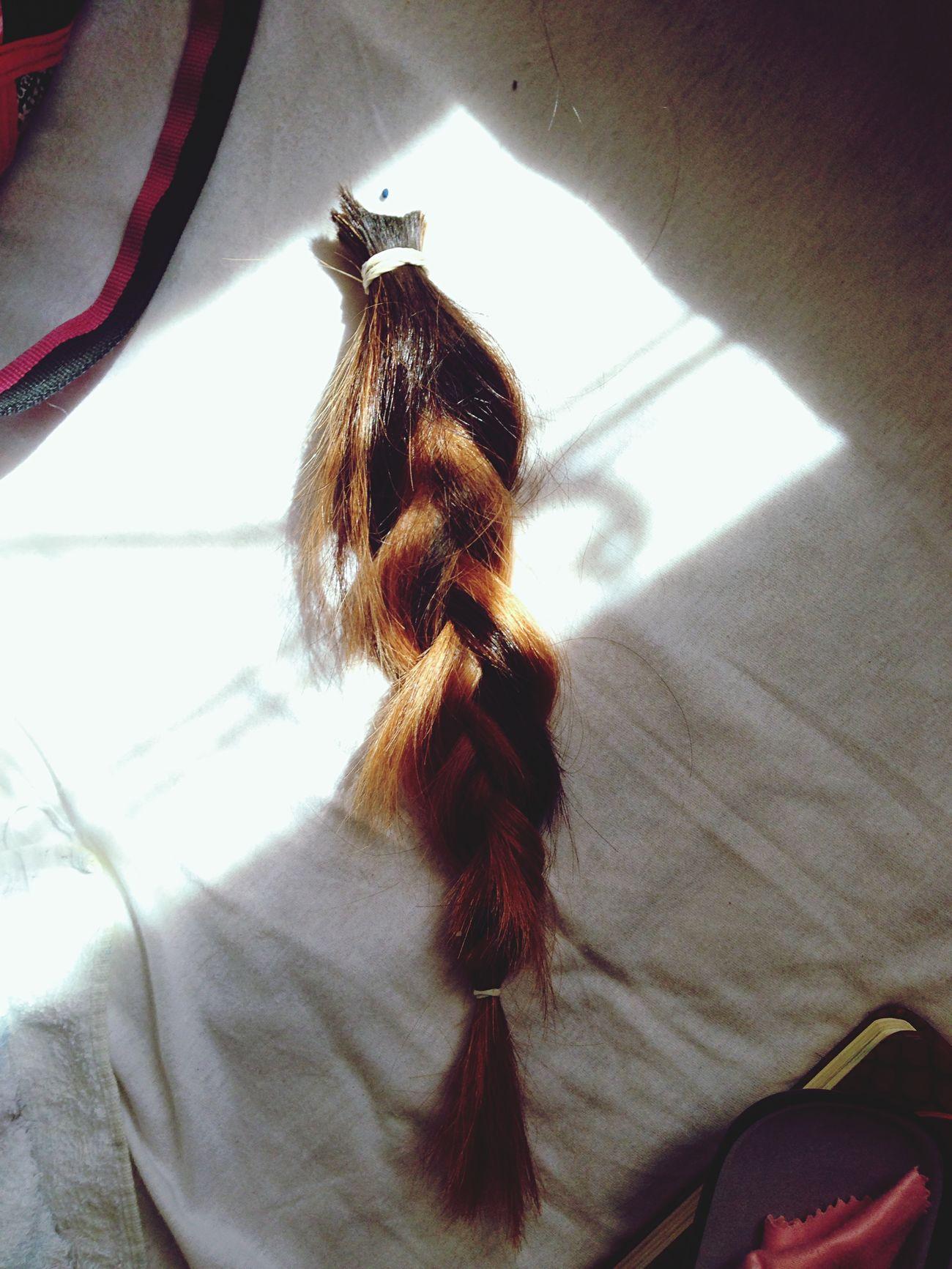 Goodbye My Hair