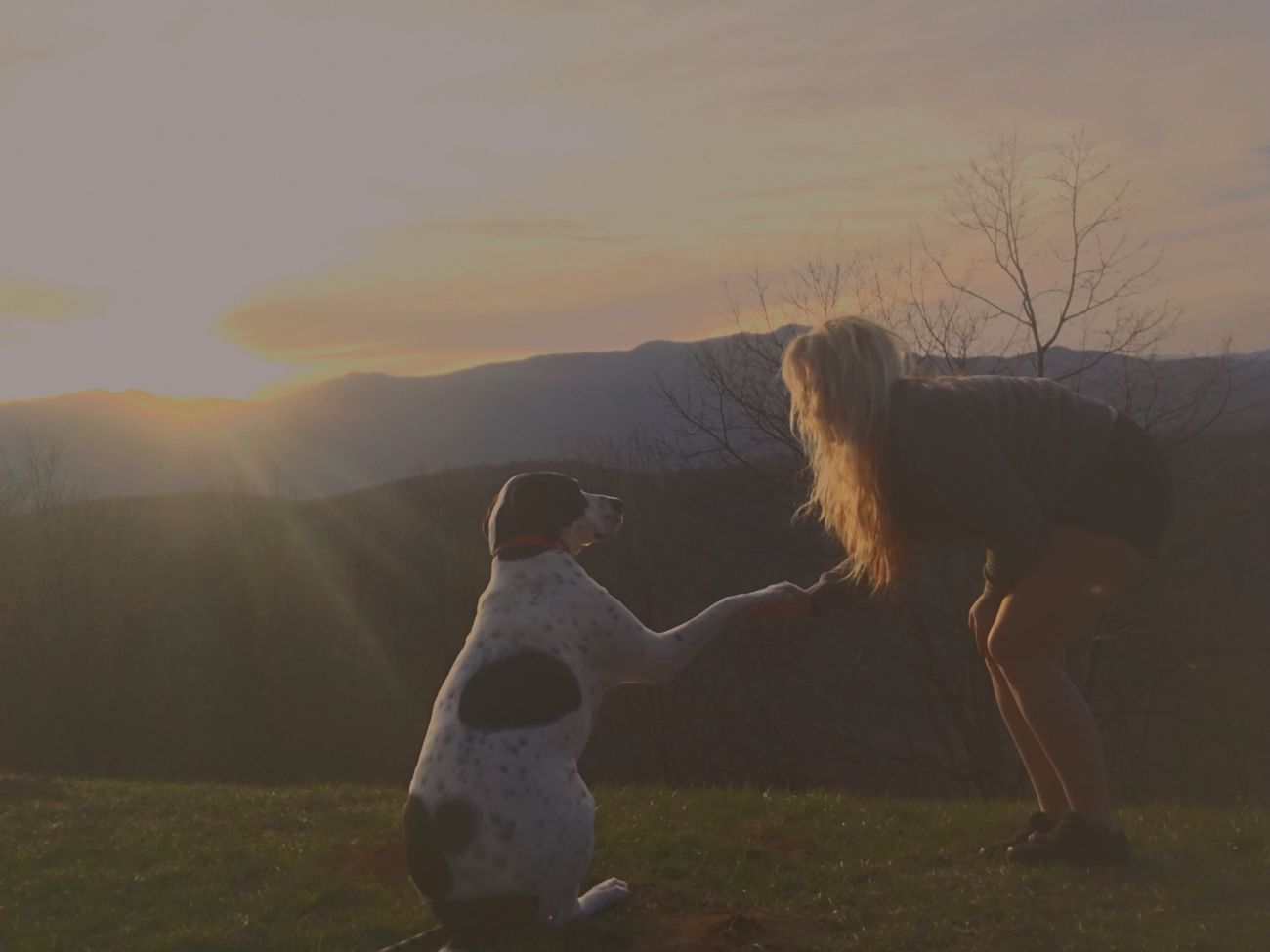 Live For The Story Nature Togetherness Landscape Outdoors Dog Sunset Mountain Sky Taking Photos Dogs Of EyeEm Goodvibes Summer Beautiful Enjoying Life Adventure Blond Hair Summer Vibes Highfive Animal Themes Summerstories
