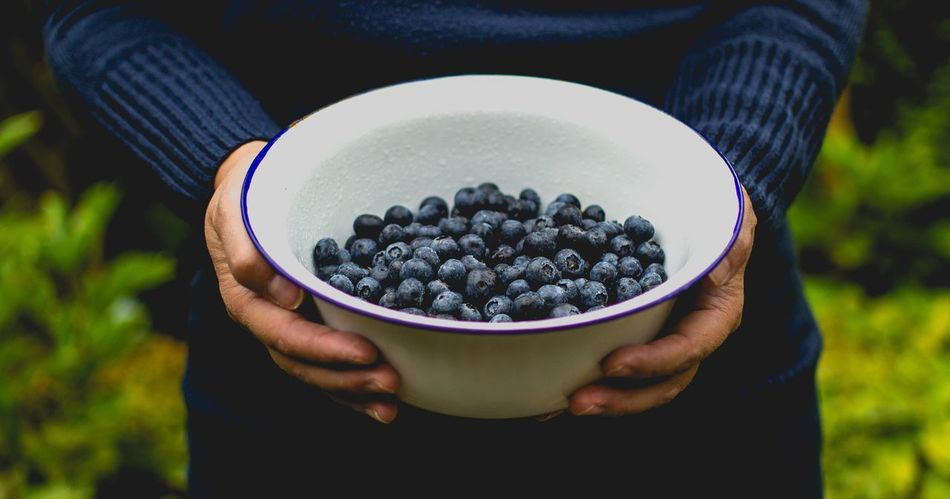 Beautiful stock photos of thanksgiving, Berry, Berry Fruit, Blueberry, Bowl