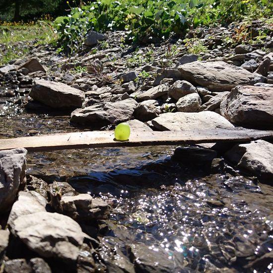 Fruitporn Bridge Over Water Iffigen Lenk Switzerland