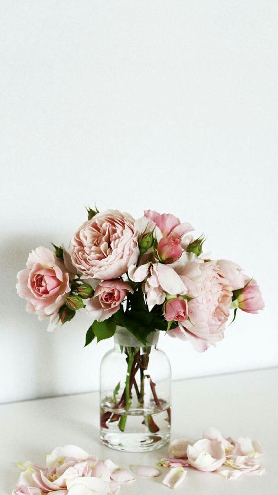 Beautiful stock photos of roses,  Arrangement,  Beauty In Nature,  Botany,  Bouquet