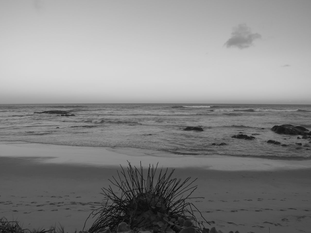 Beach black and white Sea Nature Water Horizon Over Water Scenics Tranquil Scene Beauty In Nature Sky Tranquility Beach Sand Outdoors No People Day Tree Clear Sky Landscape Beauty In Nature Black And White Photography Beachphotography Beachblackandwhite Skyandclouds  Beachtime Sun Clouds And Sky