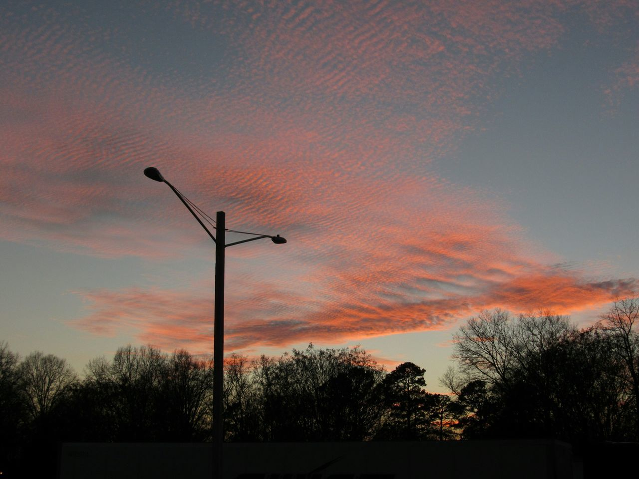 Low Angle View Of Silhouette Street Light And Trees Against Sky During Sunset