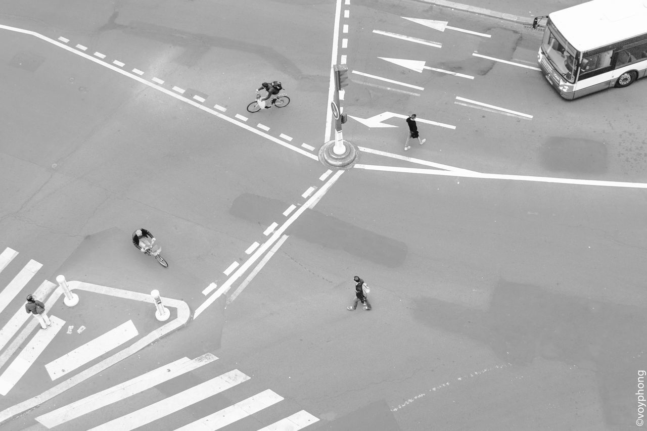 high angle view, road marking, zebra crossing, transportation, white line, road, street, walking, large group of people, day, full length, land vehicle, outdoors, city life, bicycle, city, real people, pedestrian, shadow, men, scooter, road sign, people