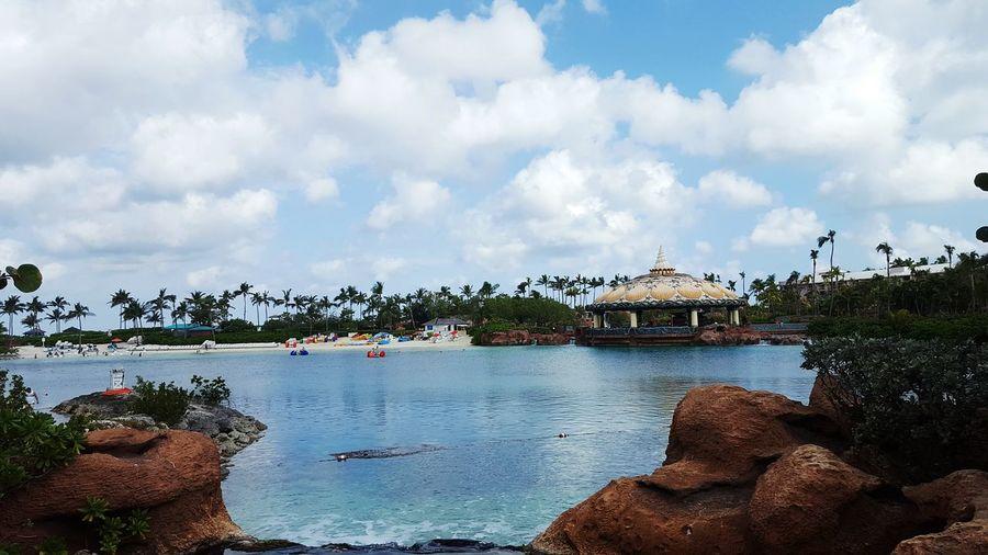 Water Tree Travel Destinations Sky Cloud - Sky Landscape Palm Tree Outdoors Nautical Vessel Bridge - Man Made Structure No People Cityscape Beauty In Nature Nature Day Nassau Bahamas Atlantis