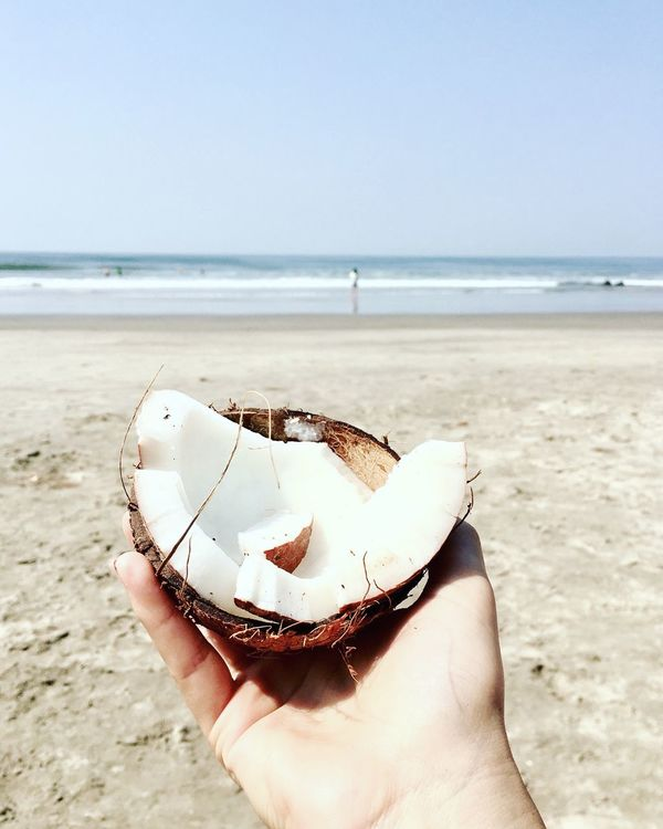 Beach Beach Life Beach Photography Close-up Coconut Eat Focus On Foreground Freshness Fruit Goa Hand Holding Horizon Over Water Human Hand In My Hand India Lifestyles Nature Sea Tropical Vacation Minimal Wellness Live For The Story