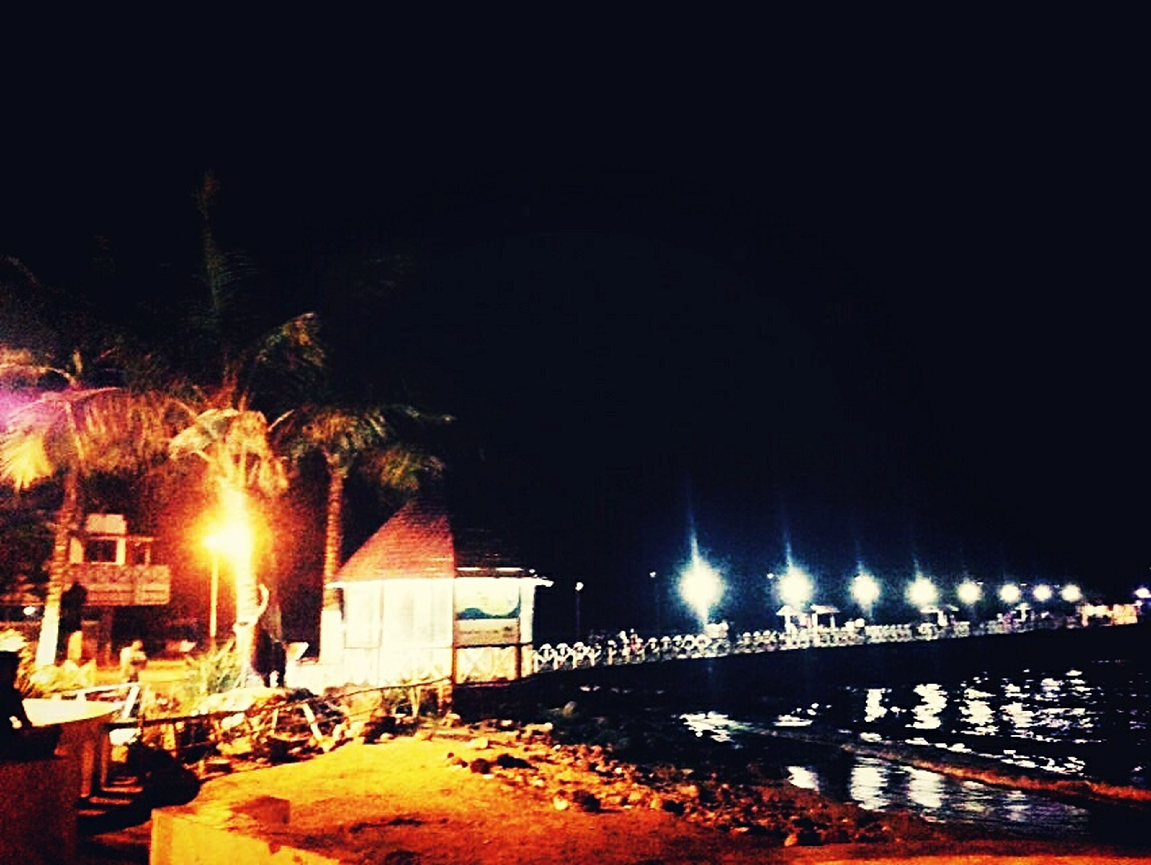 illuminated, night, built structure, architecture, lighting equipment, building exterior, street light, house, light - natural phenomenon, clear sky, glowing, outdoors, copy space, no people, dark, railing, tree, lit, absence, bridge - man made structure