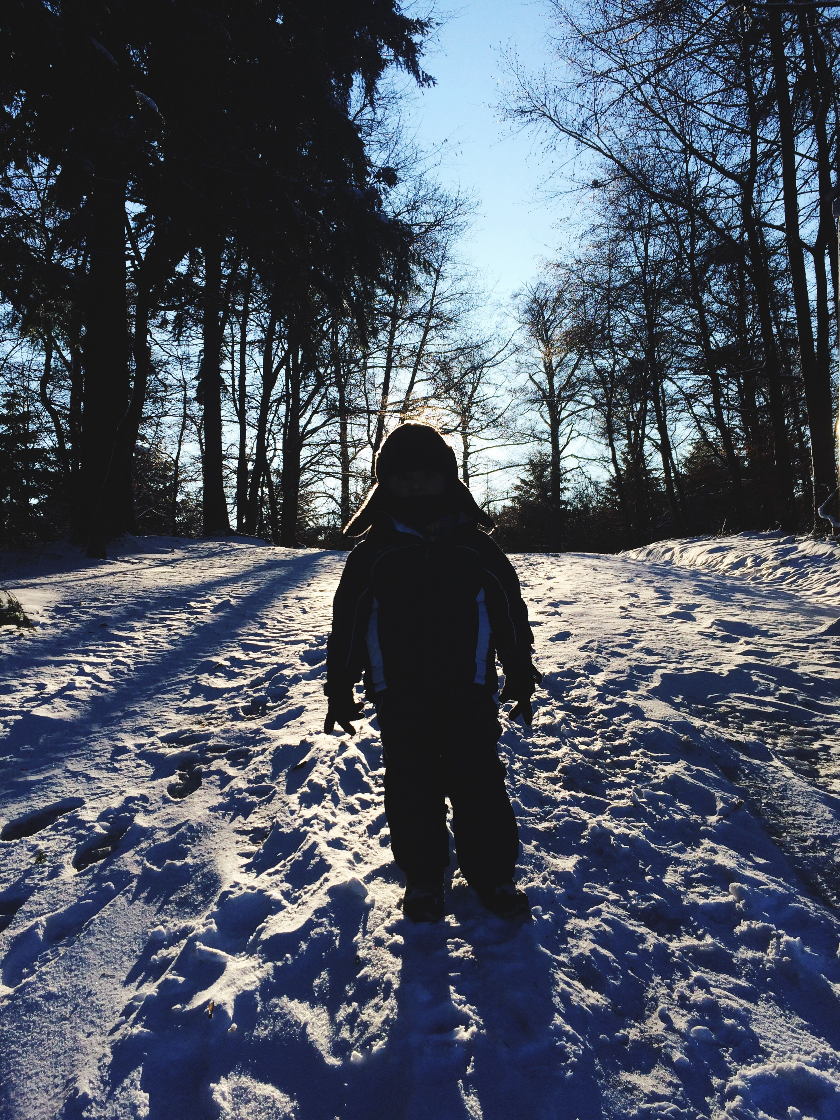 winter, snow, cold temperature, tree, rear view, season, lifestyles, full length, leisure activity, silhouette, walking, shadow, tranquility, nature, standing, weather, tree trunk, warm clothing