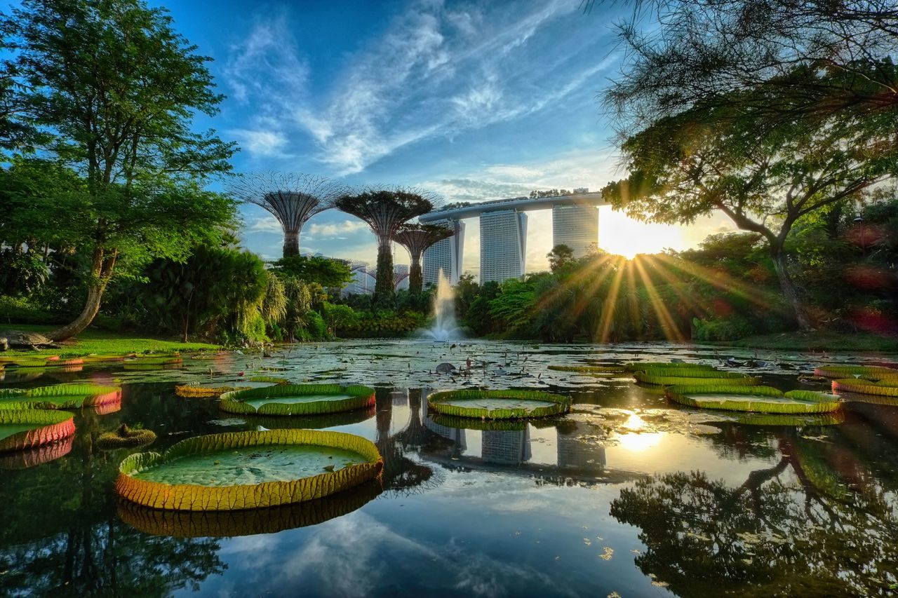 water, bridge - man made structure, reflection, tree, architecture, built structure, travel destinations, sky, luxury, outdoors, sunlight, vacations, no people, nature, day, illuminated, building exterior, scenics