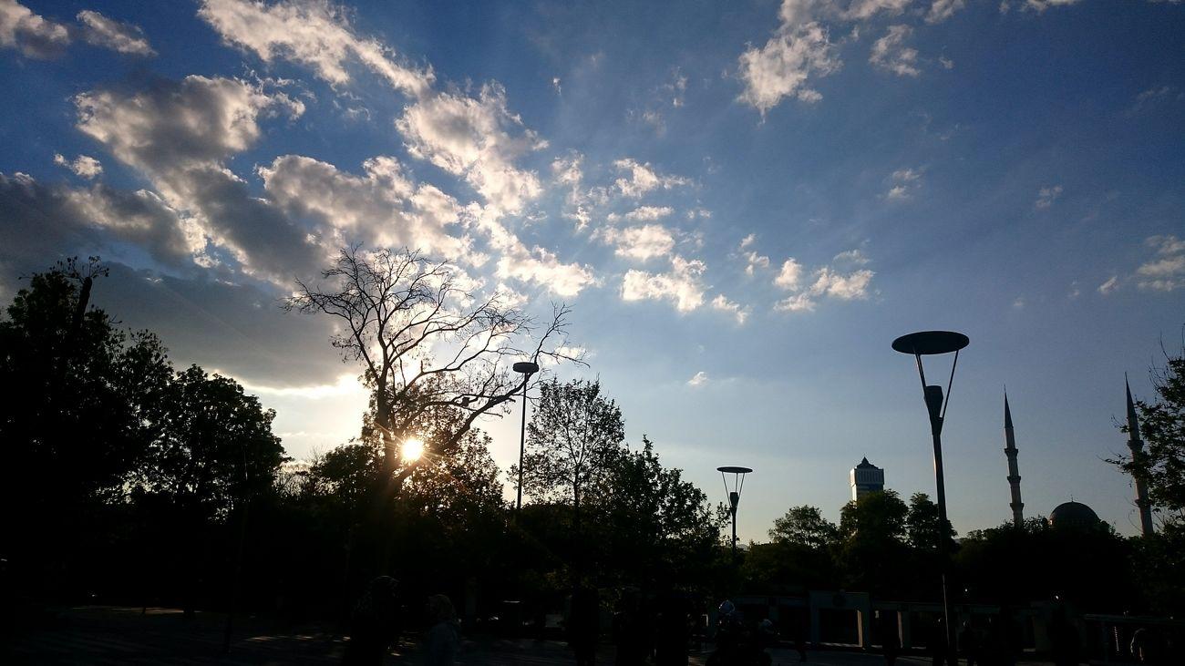 Sky Cloud - Sky Silhouette Tree Low Angle View No People Outdoors Sunset Basketball - Sport Day Turkey Gokyuzu Konya Sun ☀ Konyainstagram Konya Turkey Konyagram Sony Xperia Z3 Compact