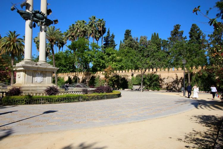 Crossing the famous Maria Luisa Park in Sevilla, with a monument dedicated to Christopher Columbus. A special day...wedding! Blue Caravel Caravel Santa Maria Christopher Columbus Clear Sky Day Feel The Journey Historic Monument Monument Original Experiences Outdoors Park People Walking  Sunlight Travel Destinations Wedding Day