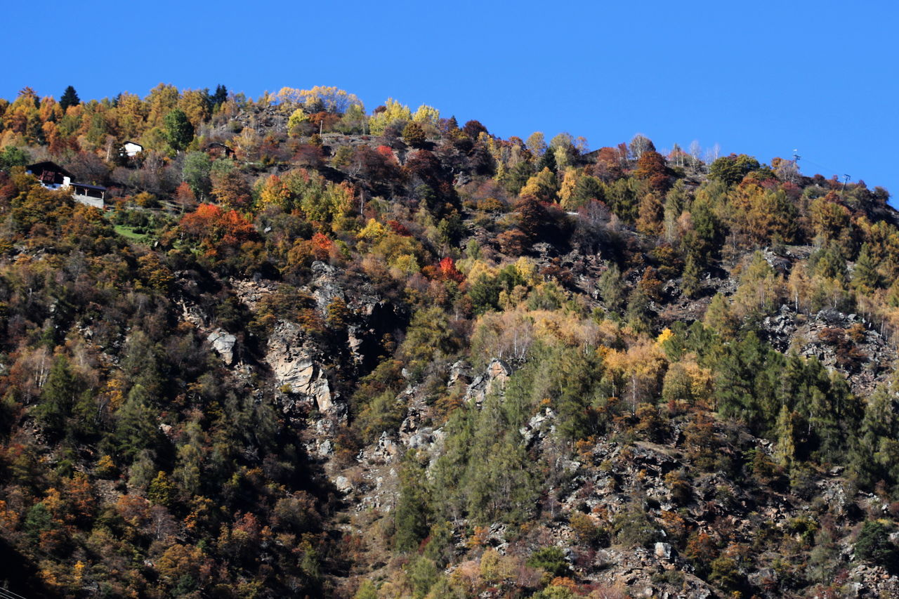 Autumn 2016 Beauty In Nature Clear Sky Day Geology Italy Nature No People Non-urban Scene Outdoors Rabland,sudtirol Rock - Object Scenics Sky Südtirol Trees And Bushes