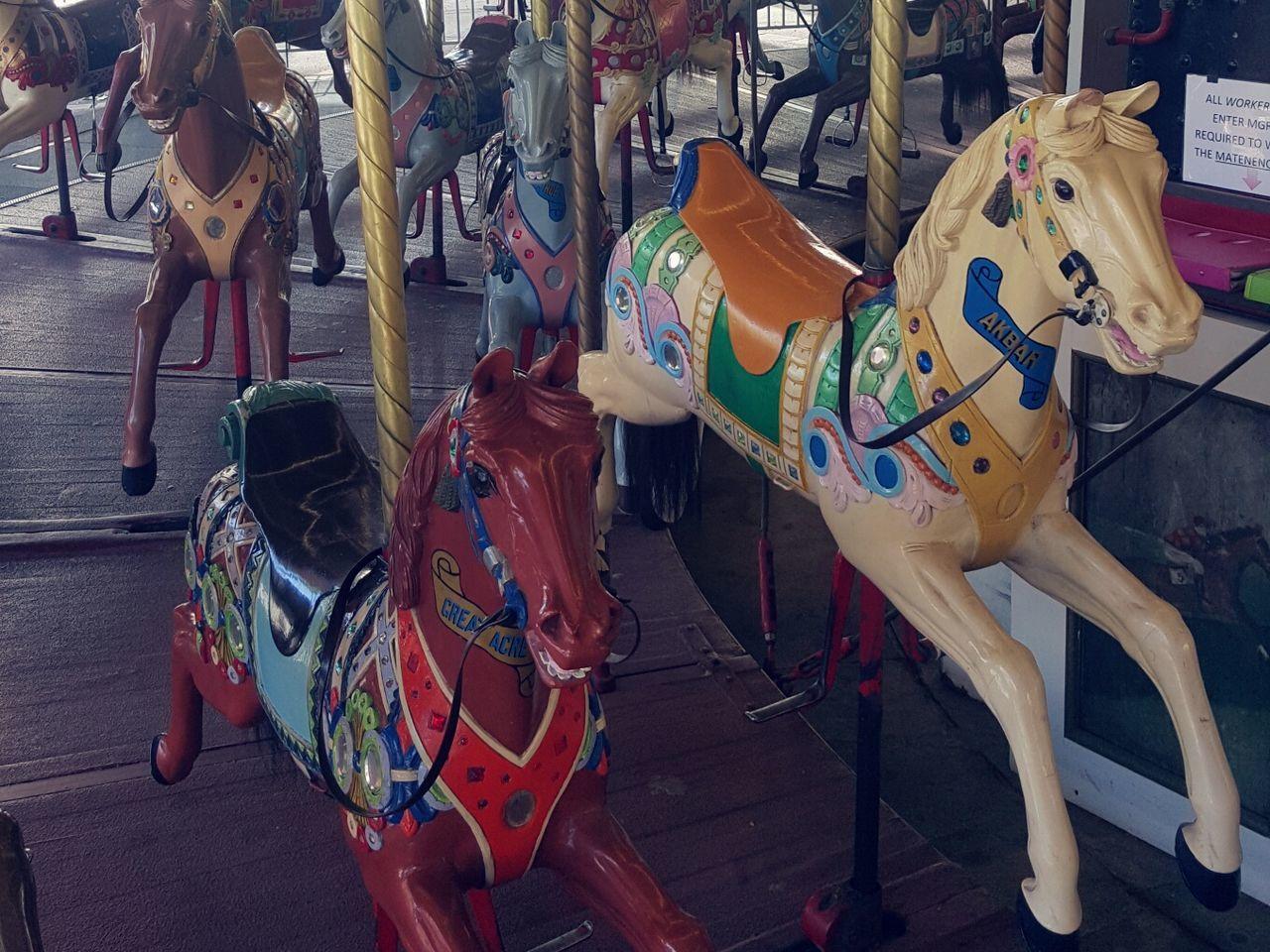 Carousel Horse Vintage Carousel Canberra City