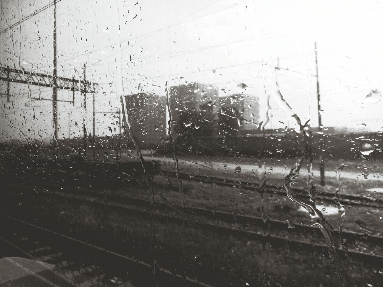 Shades Of Grey Buongiornolivorno Pioggiaa Eyem Gallery Rain Malinconia