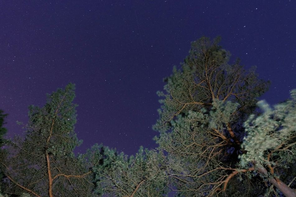 Nature Stars Night Sky Lights