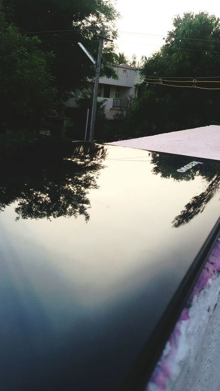 The Trees Reflecting Capture At The Laptop Reflection Tree No People Outdoors Day Sky
