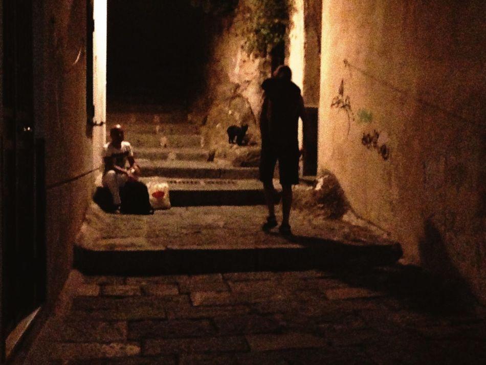 Un incontro nella notte Notte Incontro  Gatto Black Cat Napoli Light And Shadow Gatto Nero