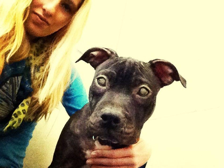 My baby Dog Puppy Cute