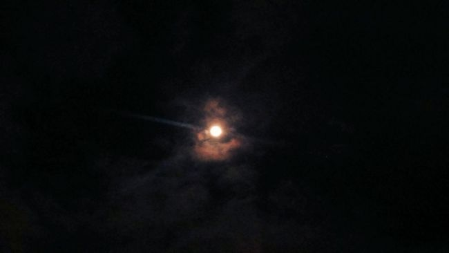 Just the Moon, with my phone camera...🎼🌌 😇😊🌛🌝🌜🌌🎼 Learn & Shoot: After Dark Eyeem Clouds And Sky Shades Of Nature Shades Of The Sky Clouds And Sky Eyeem Clouds Eyeem Mother Nature Pastel Power EyeEm Best Shots - Nature This Week On Eyeem My Cloud Obsession☁️ Shades Of Gold Eye4photography  Eyeem Moon EyeEm Team