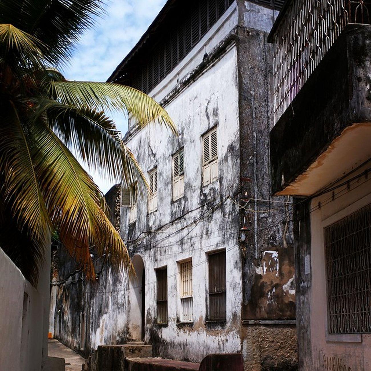 Zanzibar Stonetown Old Building Palm Oldtown Unguja Tia Tanzania Unesco Arabic African MeltingPot