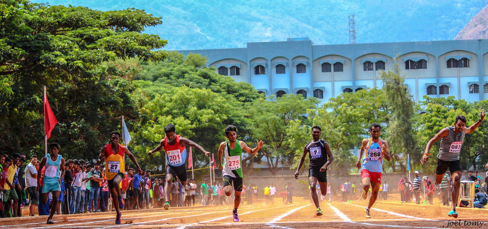 Adult Athlete Building Exterior Competition Competitive Sport Energy Large Group Of People Leap Marathon Men Outdoors People Race Real People Running Sport Sports Tree